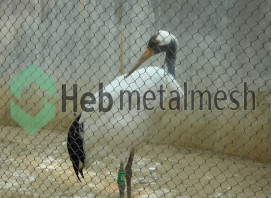 bird netting fence,crane enclosure fence netting
