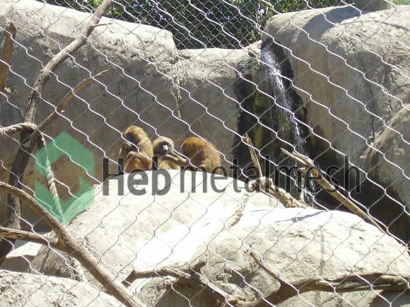 monkey fence, monkey enclosure