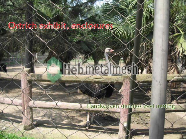 Ostrich exhibit, Ostrich cages, Ostrich enclosures