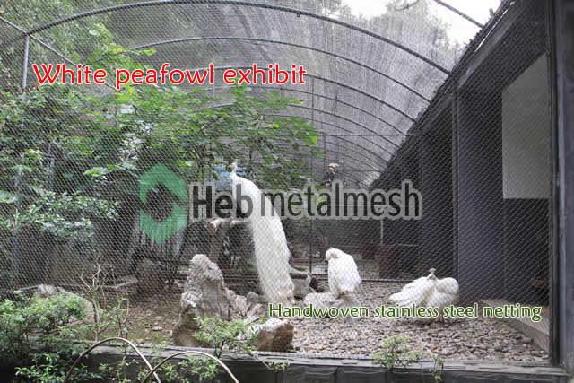 White peafowl exhibit, White peafowl cages, White peafowl enclosures