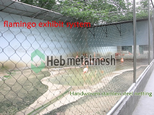 Flamingo exhibit, flamingo cages, flamingo enclosures