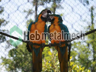 Macaw enclosures, macaw cages, macaw exhibit