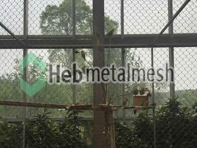 Parrots enclosures, parrots cages parrots exhibit