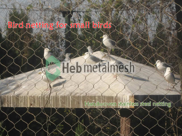 Bird Netting Fence Aviary Mesh Bird Cages Bird Exhibit