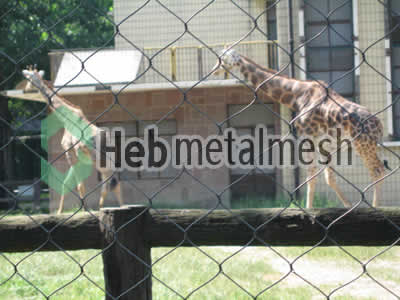 deer protection fence, deer enclosures netting, deer exhibit control mesh specifications