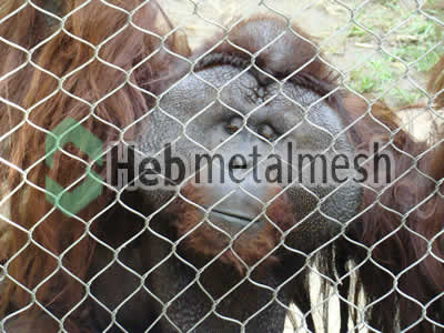 Ape protection fence, Ape enclosures netting, Ape exhibit control mesh specifications