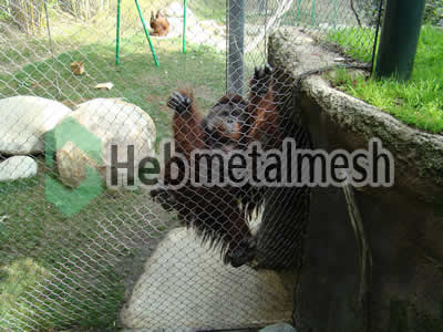 chimpanzee exhibit fence manufacturer, chimpanzee enclosure mesh, chimpanzee cage mesh