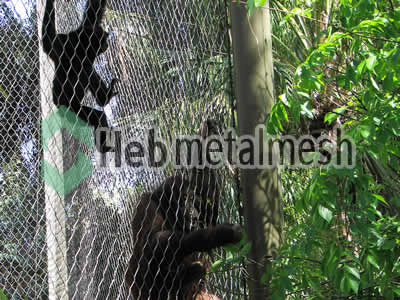 zoo enclosures for gorilla exhibit, gorilla protection netting, gorilla barrier netting for sale