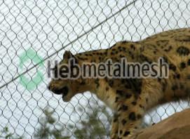 zoo mesh for leopard exhibit, leopard cages mesh, leopard fencing wholesaler