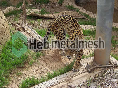 leopard cover mesh, leopard fencing, leopard safety netting for sale