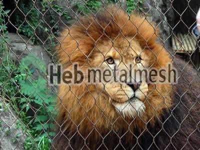 mesh for lion control mesh, lion enclosure mesh, lion cover manufacturer