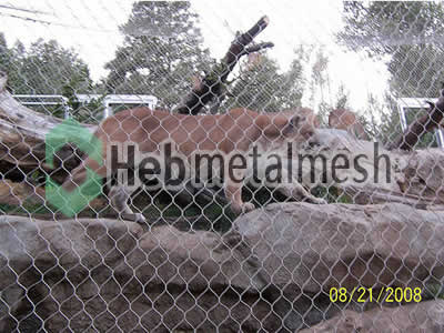 stainless steel mesh for lion protection netting, lion barrier mesh
