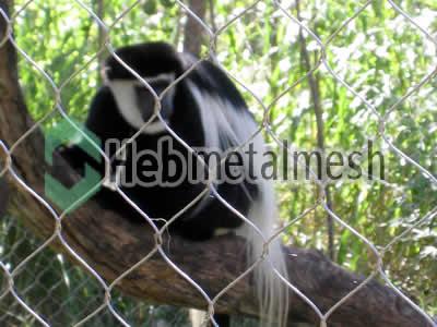 monkey exhibit design, zoo monkey enclosures plans, zoo monkey mesh supplies