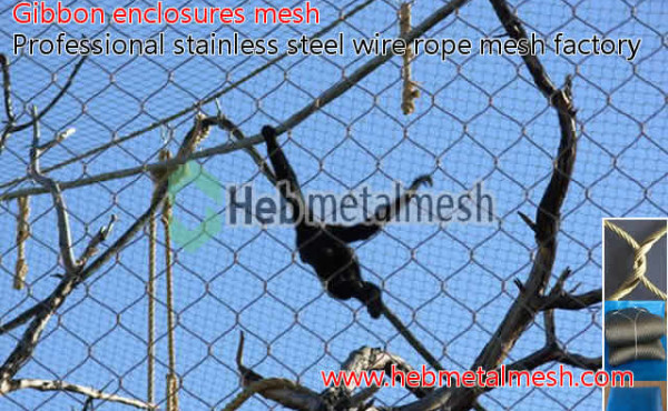 Gibbon enclosures barrier netting, gibbon cage fencing, stainless steel wire rope mesh