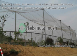Stainless steel wire rope mesh netting for bird netting, aviary mesh, outside aviary bird