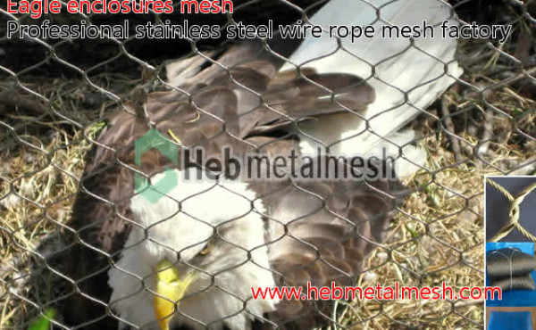 wire rope netting for eagle venues cover mesh, eagle enclosures fence, eagle exhibit safety mesh