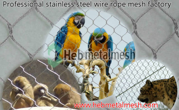 Fence enclosures of zoo with animals and bird aviary, animal fencing, bird fence netting